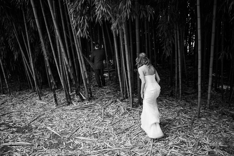 Biltmore wedding bamboo